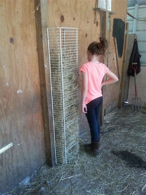 How To Make A Hay Rack For Horses by 25 Best Ideas About Hay Feeder On Diy Hay