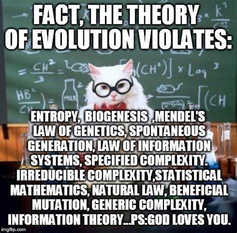 Cat Facts Meme - 1000 ideas about study meme on pinterest asian dad