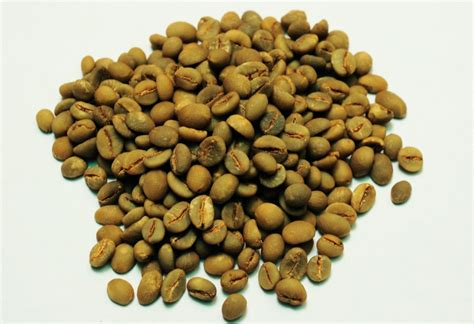 Kopi Coffee Bean civet coffee beans kopi luwak indonesia eksportir