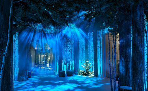 weihnachtsbaum von jony ive ist ein kleiner wald news