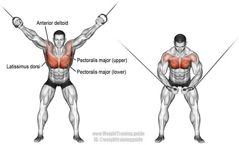 high cable cross exercise guide and weight