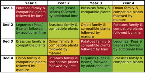 Vegetable Garden Crop Rotation The Importance Of Roation For Vegetable Crops The Basis Of