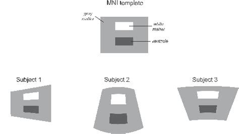 Mni Template mni template 28 images handle redirect bic the