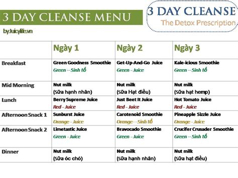 The Detox Prescription Shopping List by 3 Day Cleanse The Detox Prescription Shopping List V 224