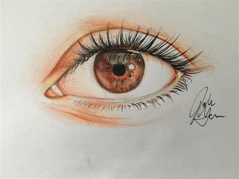 colored drawings how to draw an eye in colored pencil with pictures wikihow