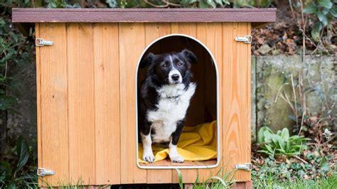 cuscini per cani taglia grande dalani cuscini per cani grandi comfort per la cuccia