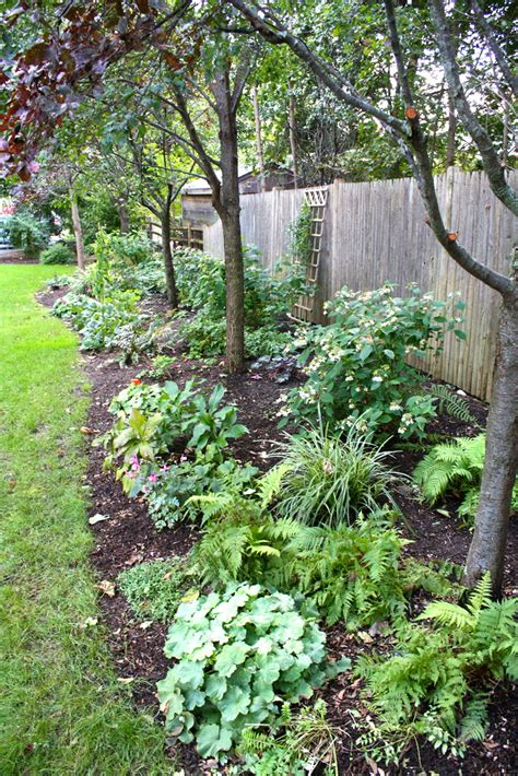 perennial border design pumpkin brook organic gardening
