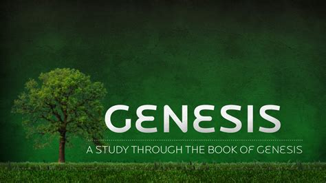 my book of genesis books bible study st vianney catholic church