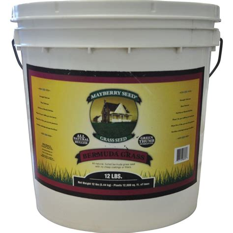 hulled bermuda couch mayberry 12 lb bermuda grass seed 96030 the home depot