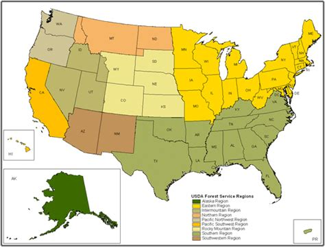 united states forest map basin and range the basin and range project