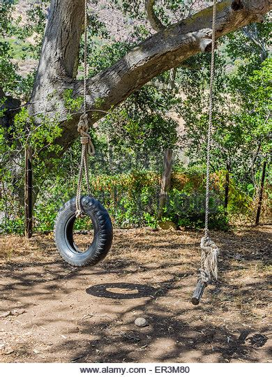 a tire swing hanging from a branch tire swing hanging from tree stock photos tire swing