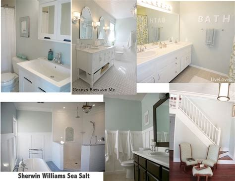sw sea salt bathroom sherwin williams paint sea salt color schemes