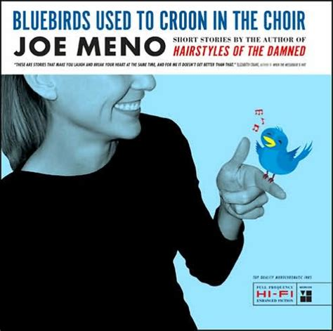hairstyles of the damned punk planet books joe meno bluebirds used to croon in the choir by joe meno