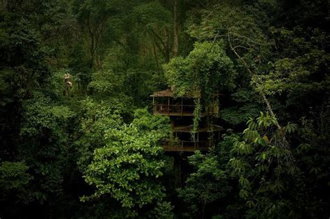 sustainable treehouse community in costa jungle