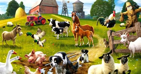 Animal Farm Keeps Desktop Clean by Animal Wall Murals Wallpaper All Hd Wallpapers