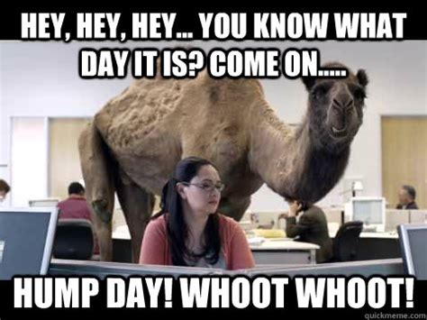 Sexy Hump Day Memes - hey hey hey you know what day it is come on