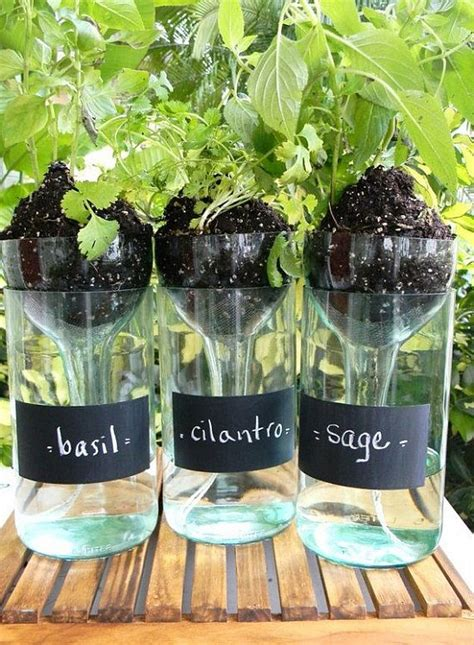 self watering planters using wine bottles diy tutorials