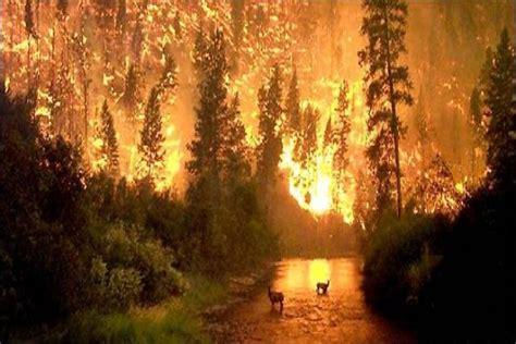 imagenes impresionantes de la naturaleza las fotos mas impresionantes de la naturaleza pictures