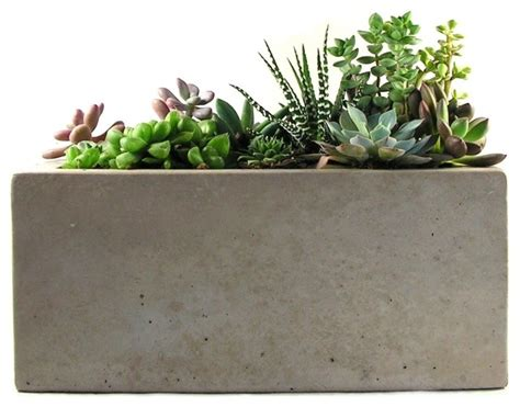indoor planters rectangular concrete planter modern indoor pots and