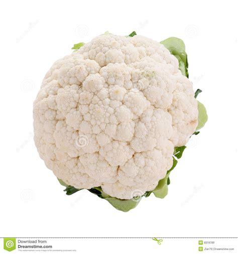 Cauliflower Fresh fresh cauliflower royalty free stock images image 8319789