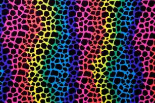 rainbow leopard print stretch lycra fabric 10