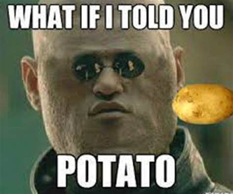 Funny Potato Memes - morpheus goes full potato