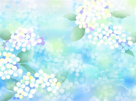 Powerpoint Background White Flower Www Pixshark Com Blue Flower Powerpoint Backgrounds Hd Free Wallpaper