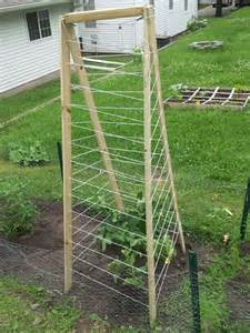 Lattice Trellis Designs Cucumber Trellis Outside Home Sweet Home Pinterest
