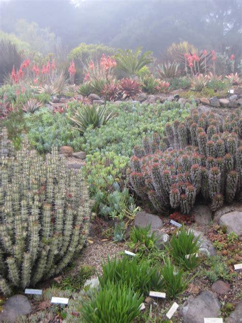 berkeley botanical garden hours report from the berkeley botanical garden behnke