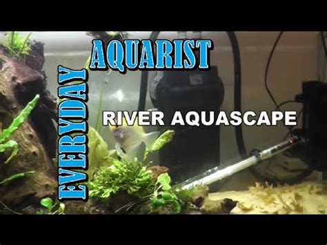 aquascape kl aquarium aquascape african inspired riverbed