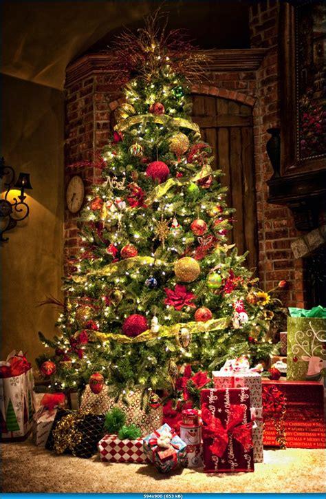 nice christmas trees traditional tree very nice christmas decor