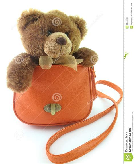 Bag With Teddy teddy in a bag stock photo image 8044930