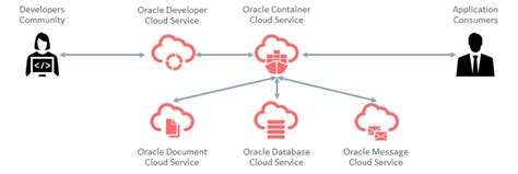 cloud programming with golang develop microservice based high performance web apps for the cloud with go books johan louwers tech oracle cloud deploying