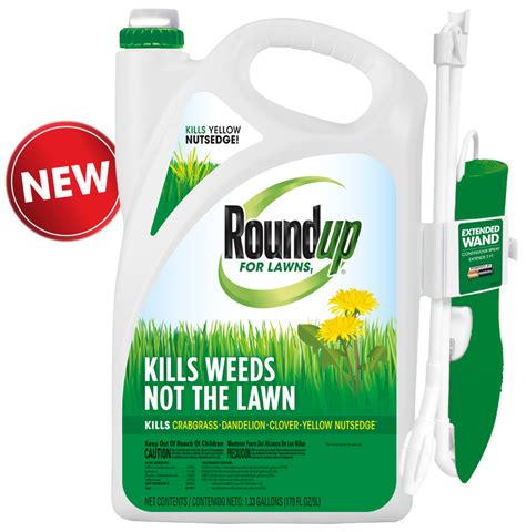 roundup for lawns 1 grass friendly killer with wand - Roundup For Lawns