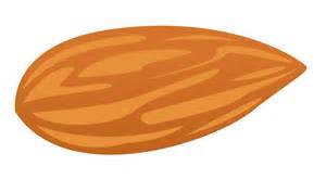 cartoon almond cliparts free download clip art free