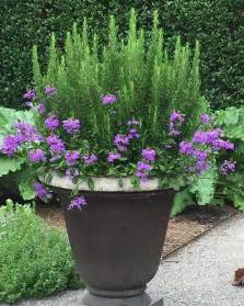 Gardening Pots And Containers Best 25 Container Gardening Ideas On