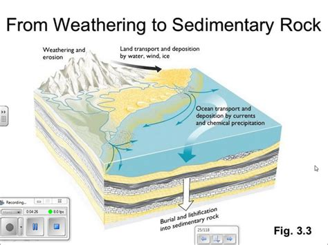 diagram of how sedimentary rocks are formed sedimentary rock formation diagram www pixshark