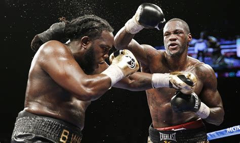 In Search Of The Wilder Deontay Wilder Proves He S No Fraud Against Bermane Stiverne Sport The Guardian
