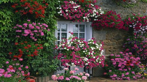 house flower garden c 243 mo tener un jard 237 n con flores durante todo el a 241 o infogr 193 fico ecoosfera