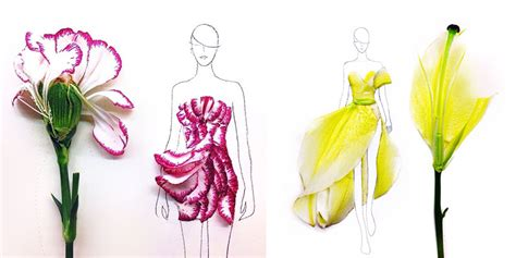 fashion illustration uses designer turns real flower petals into fashion illustrations