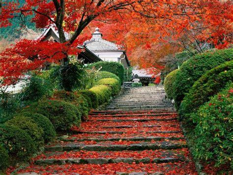 imagenes de japon paisajes paisajes jap 243 n imagui