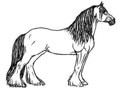 printable coloring pages clydesdale horses clydesdale horse coloring pages