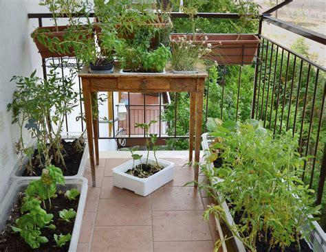 orto sul terrazzo di casa l orto sul balcone l eco di san gabriele