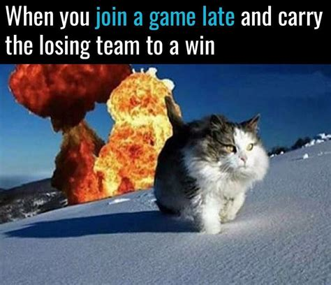 8 Ways To A Laugh At Your Cats Expense by 35 Cat Memes To Make You Laugh Quotations And Quotes