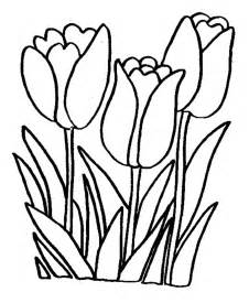 tulip coloring pages printable tulip coloring pages coloring me