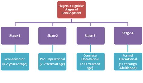 Cognitive Development Theory Thesis Statement Stages Of Development Piaget