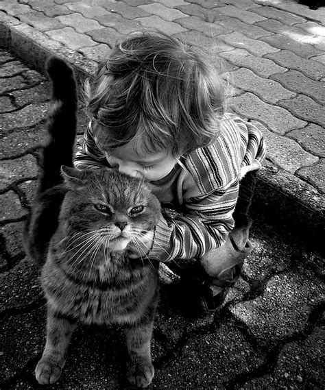 cat child 20 heartwarming photos of with their cats