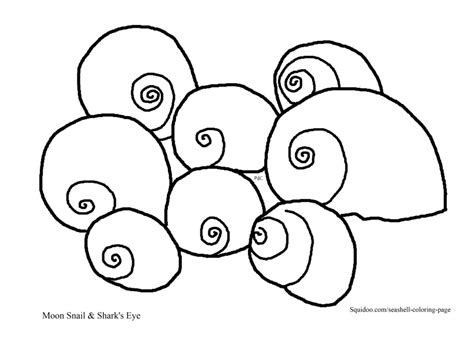 top 25 free printable shell coloring pages online