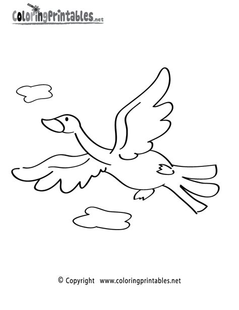 Tropical Bird Coloring Pages Bird Coloring Pages To Print