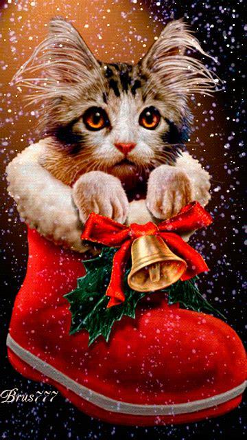 santalet  find      stocking weihnachtsszenen weihnachten tiere und